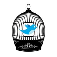 Twitter: o passarinho vai para a gaiola